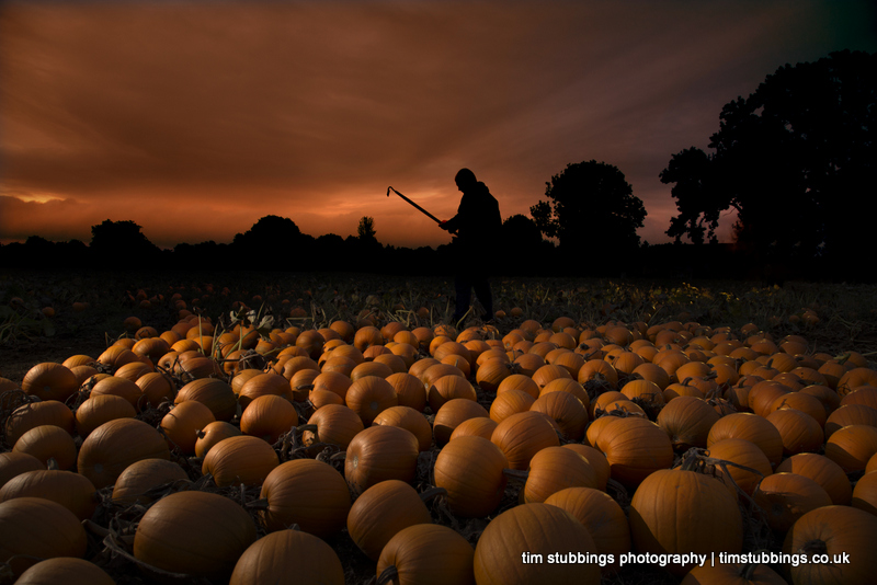 Editorial photography in Kent for Aldi (UK) - Pumpkins at dawn